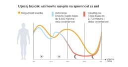 dnevna krivulja osobnog bioritma